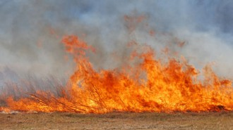 grass-fire-450