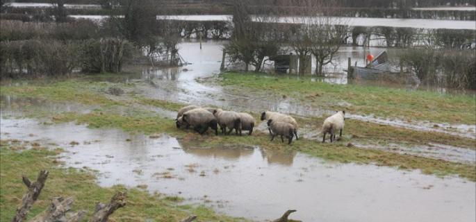 romney marsh under water