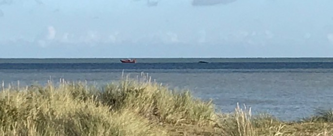 Littlestone RNLI Lifeboat tows the stricken powerboat back to the boat club