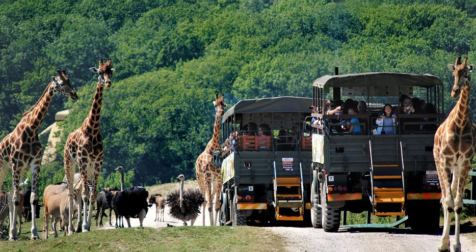 Wild Animal Park has restricted opening